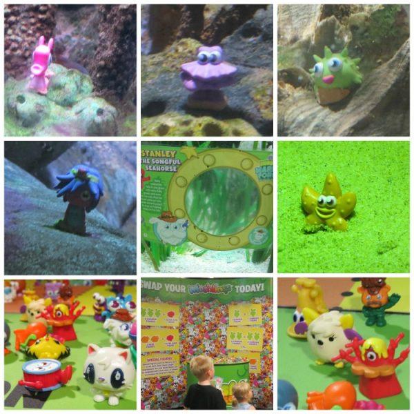 moshi collage
